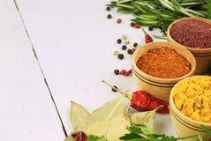 Verschillende soorten kruiden en kruiden Stock Foto