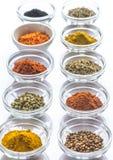 Verschillende soorten kruiden en kruiden Royalty-vrije Stock Foto
