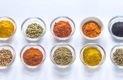 Verschillende soorten kruiden en kruiden Royalty-vrije Stock Afbeelding