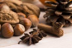 Verschillende soorten kruiden, noten en droge sinaasappelen Stock Foto's