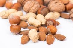 Verschillende soorten noten Stock Afbeelding
