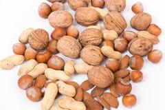 Verschillende soorten noten Stock Foto