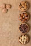 Verschillende soorten noten Stock Fotografie