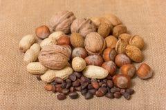 Verschillende soorten noten Royalty-vrije Stock Foto