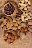 Verschillende soorten noten Royalty-vrije Stock Afbeeldingen