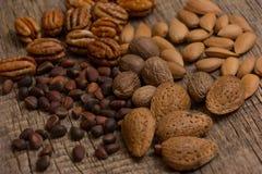 Verschillende soorten noten Royalty-vrije Stock Foto's