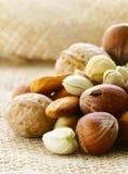 Verschillende soorten noten (amandelen, okkernoten, hazelnoten) Stock Foto's