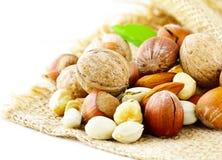 Verschillende soorten noten (amandelen, okkernoten, hazelnoten) Stock Fotografie