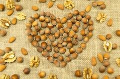 Verschillende soorten noten in de vorm van hart Royalty-vrije Stock Foto's