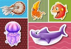 Verschillende soorten overzeese dieren Royalty-vrije Stock Afbeeldingen