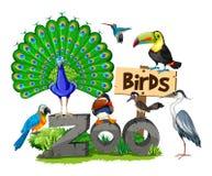 Verschillende soorten vogels in de dierentuin royalty-vrije illustratie