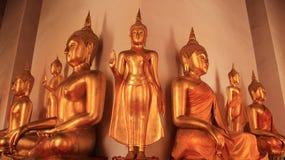 Verschillende Stijlen van Gouden Buddhas-Beeld Stock Fotografie