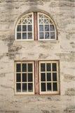 Verschillende stijlen van vensters Stock Fotografie