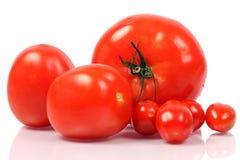 Verschillende tomaten Royalty-vrije Stock Afbeelding