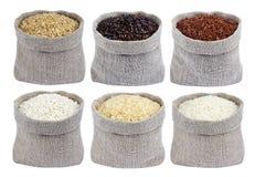 Verschillende types van rijst in zakken op witte achtergrond inzameling Stock Afbeeldingen
