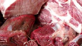 Verschillende types van ruw varkensvleesvlees en rundvlees stock video