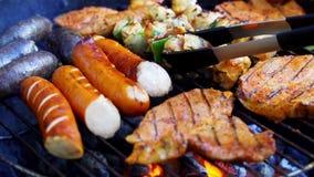Verschillende types van sappig vlees op hete steenkolen bij de grill in langzame motie stock video