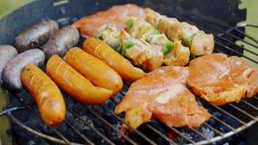 Verschillende types van sappig vlees op hete steenkolen bij de grill in tuin stock video