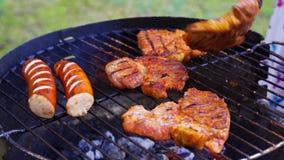Verschillende types van sappig vlees op hete steenkolen bij de grill in tuin stock videobeelden