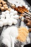 Verschillende types van suiker Royalty-vrije Stock Fotografie