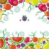 Verschillende types van vruchten die in frame worden gecombineerd stock illustratie