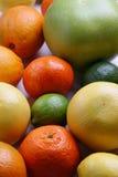 Verschillende verse citrusvruchten Stock Afbeeldingen