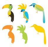 Verschillende Vogels vector illustratie