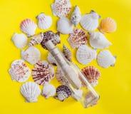 Verschillende witte zeeschelpen met bericht in een fles op gele achtergrond stock foto's