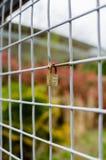 Verschlossenes Vorhängeschloß auf quadratischem Metallzaun - Vertikale Lizenzfreie Stockfotos
