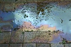 Verschmutztes Wasser stockfoto