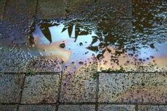 Verschmutztes Wasser stockfotografie