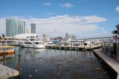 Verschmutztes Wasser in Miami Stockfoto