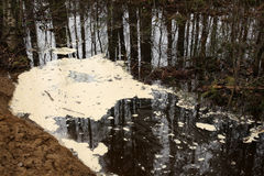 Verschmutztes Wasser mit Schaum Stockfotografie