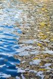 Verschmutztes Wasser und Abschaum Stockbild
