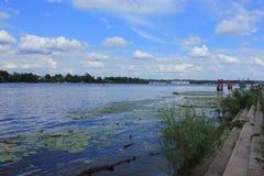 Verschmutzung des Wasserbeckens Stockfotos