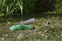Verschmutzung im Wasser Lizenzfreie Stockfotos