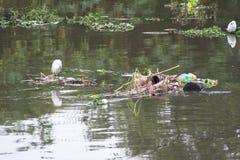 Verschmutzung Pinheiros-Fluss stockbilder
