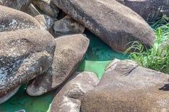 Verschmutzung und verseuchter Fluss Nil nahe Mwanza, Afrika Lizenzfreies Stockfoto