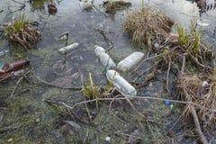 Verschmutzung von Gewässern Ökologisches Problem Lizenzfreie Stockbilder