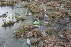 Verschmutzung von Gewässern Ökologisches Problem Stockfotos