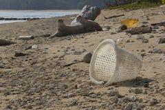 Verschmutzung von Küstenökosystemen, natürlicher Plastik Stockbild