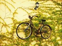 Verschobenes Fahrrad Stockfotografie