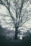 Verschrikkingsscène van een enge vrouw in het nevelige bos stock afbeeldingen