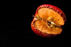 Verschrompel rode appel Royalty-vrije Stock Foto's