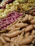Verse Aardappels en Uien Royalty-vrije Stock Fotografie