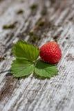 Verse aardbei - gezonde voeding Stock Foto