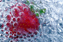 Verse aardbei in water Royalty-vrije Stock Foto