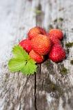 Verse aardbeien - gezonde voeding Royalty-vrije Stock Foto's