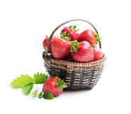 Verse aardbeien in kleine die mand op wit wordt geïsoleerd stock afbeelding