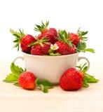 Verse aardbeien met bladeren en bloemen Royalty-vrije Stock Foto
